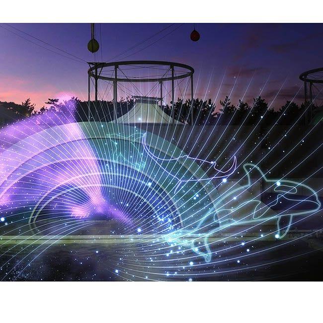 夜の特別パフォーマンスも!鴨川シーワールドでシルバーウィークイベント開催